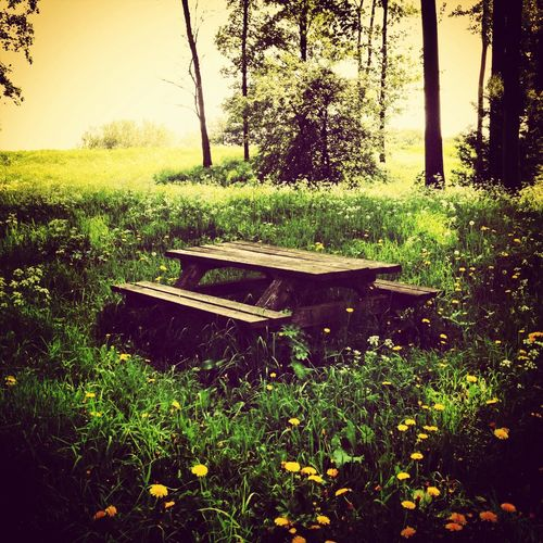Places Nature