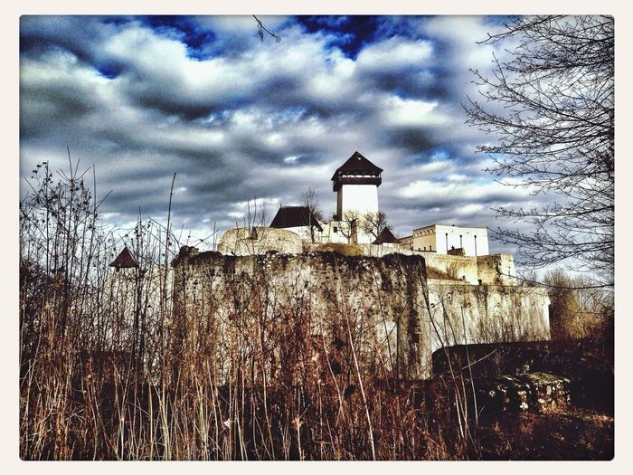 Trencin Castle , southern fortification #castle Palace #fortification Wall #walls #bulwark #branches #trees #trencin #snapseed #instagram #iphonephoho Iphonephotography