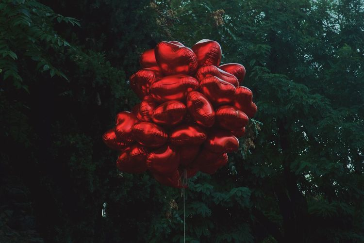Red heart shapes against trees