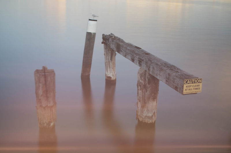 Close-up Communication Day Focus On Foreground Lake Nature No People Outdoors Post Reflection Selective Focus Sign Still Life Text Tranquil Scene Tranquility Water Wood - Material Wooden Post