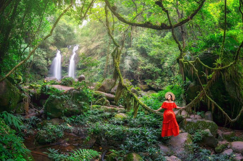 Woman standing by plants in forest