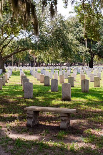 View of cemetery against trees
