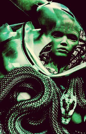 Type Faces CyberPunk Cleopatra Demolition Stories Parallel Universe Photographic Approximation InterSECTINS Mystères Des Femmes