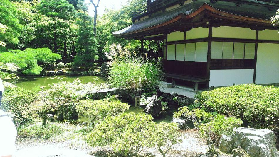 銀閣寺 Ginkakuji 京都 Kyoto Japan Htcbutterfly