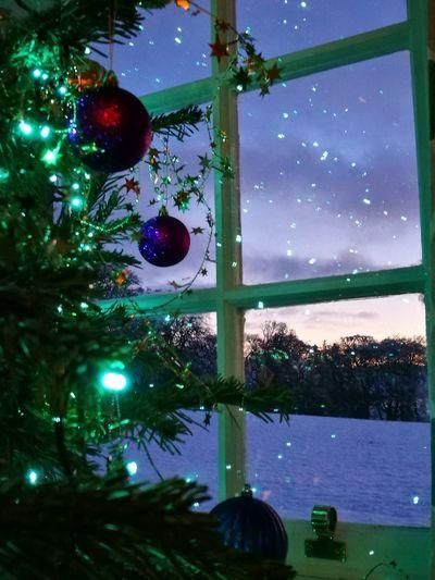 Christmas Night Celebration Tree Christmas Lights Indoors  Sky