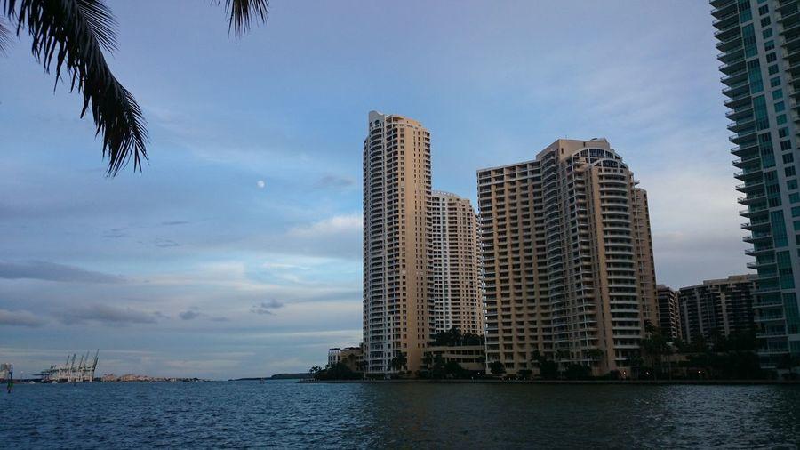walk through Miami Miami, FL Sky And Clouds Skyline Architecture Building Building Exterior Buildings & Sky Built Structure City Cityscape Cloud - Sky Day Low Angle View Miamiphotographer #miamiflorida #miamifashion #miaminights #miamiliving #miamistyle #miamibound #miamibeach #miamilife #brickell #wynwood #coralgables #sobe #igersmiami #ilovemiami #illgrammers #ig_masterpiece #incredible_shot #supremeshooters #photoofthe Modern Mornig Glow Nature No People Outdoors Ozean Sea Sky Skyscraper Water Waterfront