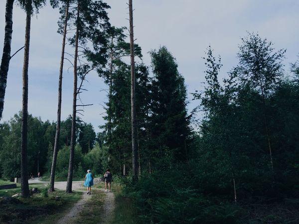 Walking Home Forest Tree Family People Landscape Växjö  Sweden Mother Grandma Summer Left Behind