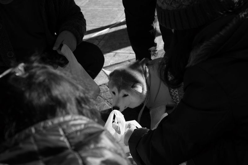 Streetphotography Monochrome Leica Real People Childhood Women Men Lifestyles Outdoors Togetherness Volunteer Human Body Part Day Human Hand Close-up Adult People