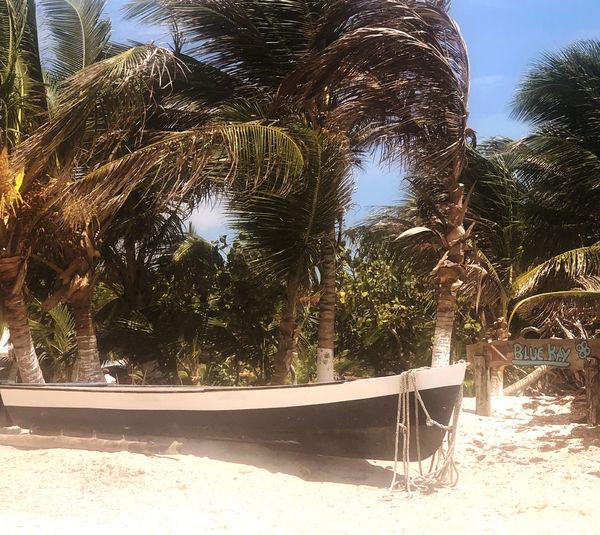 Costa Maya boat