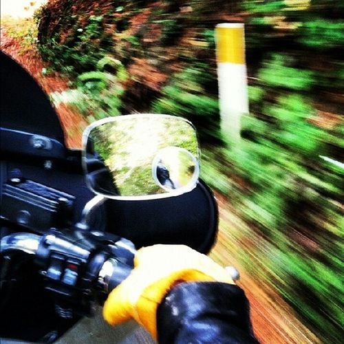 Faster Moto Harleyride Harleydavidson Higherelevation sonoma backroads freeride takeiteasy