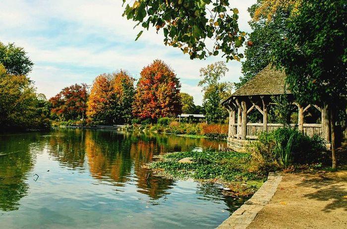 Prospect Park Lake Nature