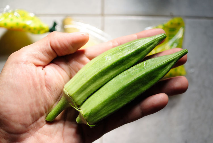 Cropped hand of person holding okras