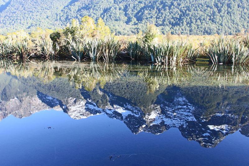 EyeEmNewHere Milford Sound Mirror Lakes