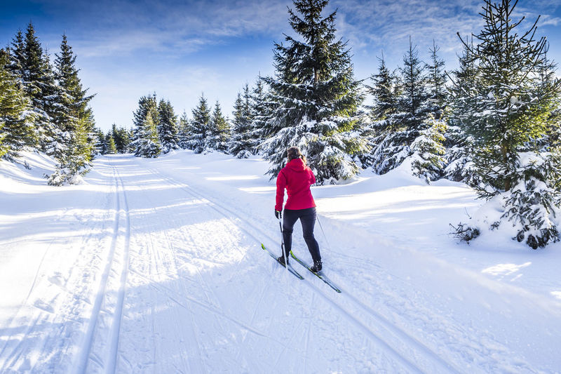 Female skier doing cross-country skiing Austria Cross-Country Skiing Holiday Skiing Thuringen Winter Woman Activity Bayern Beauty In Nature Cross-country Female Fitness Oberhof One Person Outdoors Rennsteig Skating Ski Slope Snow Sports Switzerland Thüringer Wald Winter