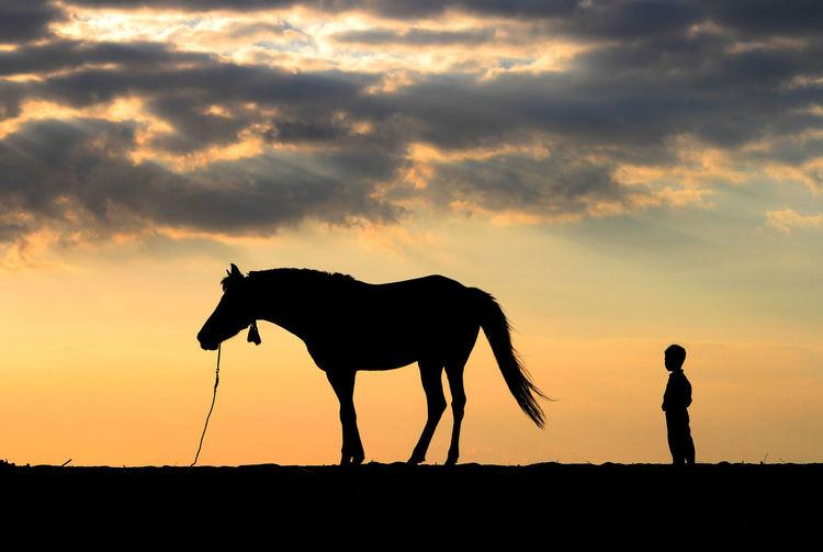 Silhouette men on field against sky during sunset