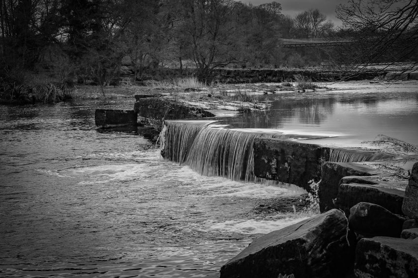 Water_collection Waterfall Black And White Nature_collection EyeEm Best Shots Bnw_collection Black & White Blackandwhite Blackandwhite Photography Countryside EyeEm Gallery Canon Eos M3 Nature_perfection Nature Photography EyeEmBestPics Landscape_photography Nature_collection Eye4photography  Water Tree Nature Beauty In Nature Day Plant Tranquility Scenics - Nature Tranquil Scene Reflection Idyllic