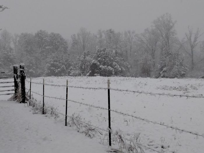Beauty In Nature Snow Day ❄ Alabama Snow Snowy Landscape Snow Covered Fence