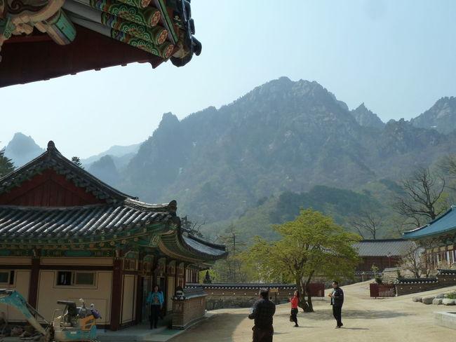 NatureReserve Blossom Day Koreanarchitecture Mountain Nature Outdoors Soraksan Tree