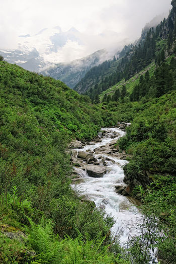 European Alps landscape of Zillertal valley part of Gerlostal Valley. (Tirol Austria). Alps Alps Austria European Alps Forest Gerlos Hiking Hiking Landscape Landscape_Collection Mountain Nature Outdoors Path Peak River Tirol  Trail Valley Wildgerlostal Zillertal Zillertal Alps