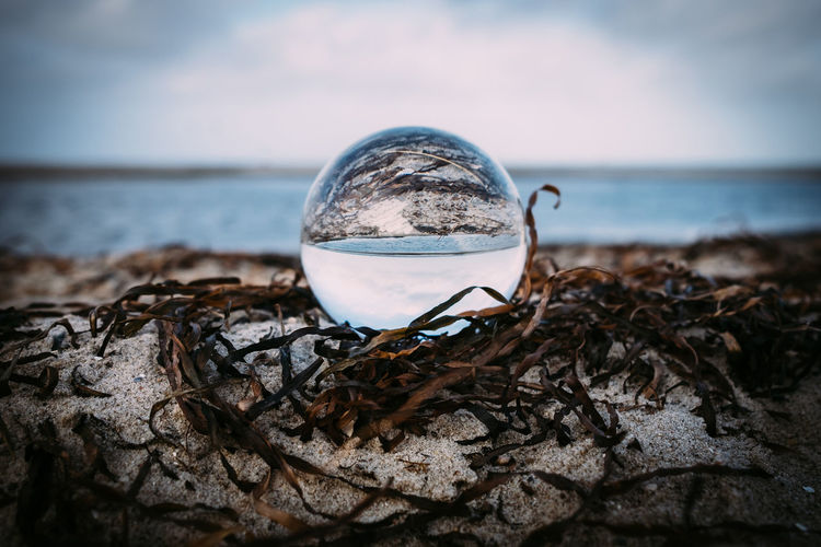 Crystal Ball Reflection Beauty In Nature Close-up Day Focus On Foreground Horizon Over Water Nature No People Outdoors Sea Sky Water