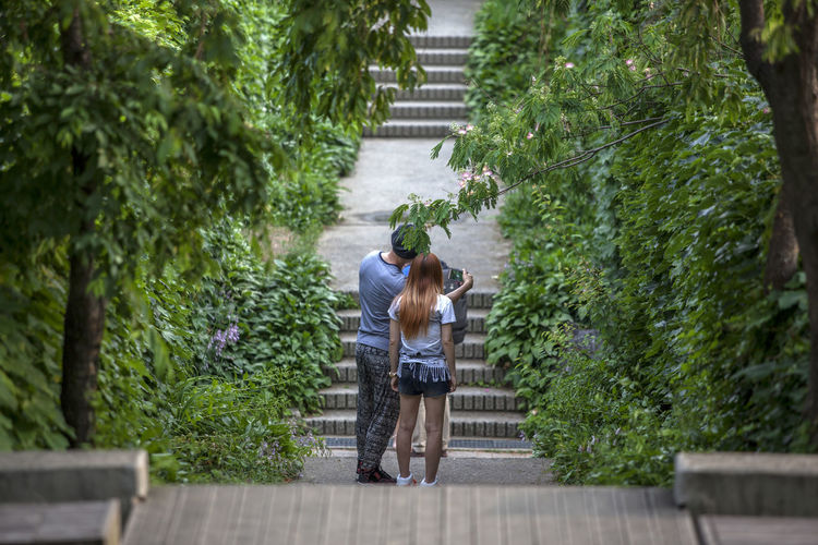 Beauty In Nature Calm Checking In Couple Day Green Green Color Growth Ivy Lush Foliage Mammal Nature No People Outdoors Pathway Plant Seonyudo The Way Forward Tranquility Tree Walkway