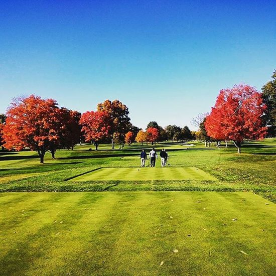 Golf Golf Course Winged Foot Autumn Fall Foliage Colorful Trees Fairway Foursome The Great Outdoors With Adobe The Great Outdoors - 2016 EyeEm Awards T