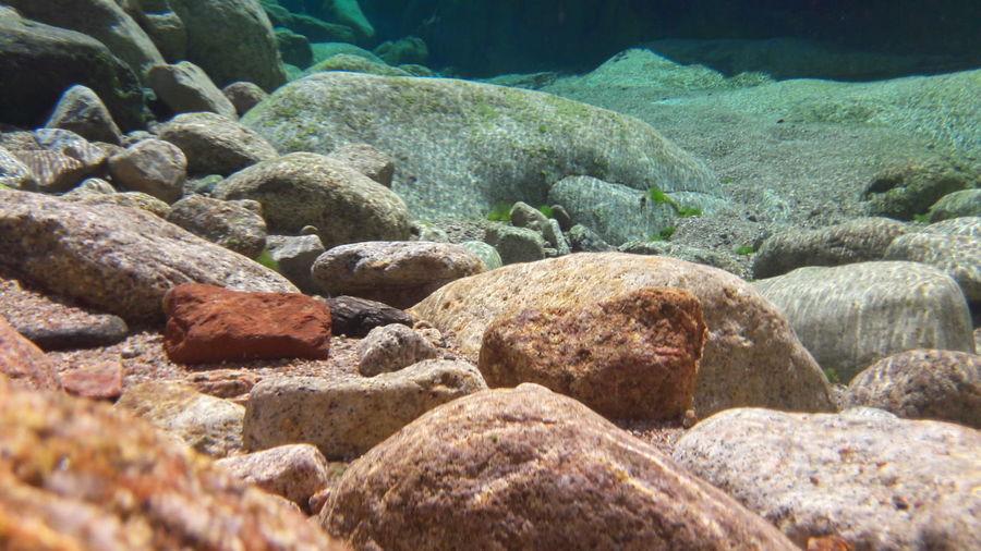 Cavu River Colorfull Corsica Underwater