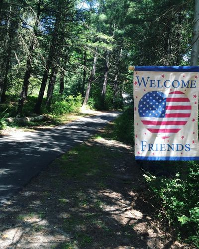 USA America American Flag Forest Tree On The Road