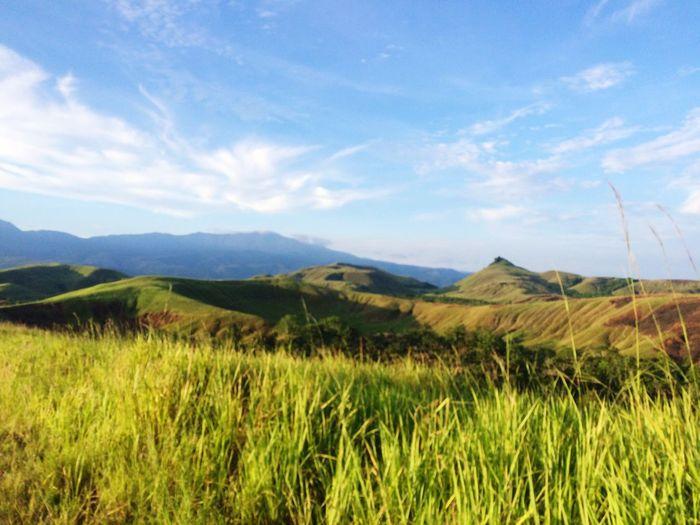 Ilalang Padang Rumput Bukit Danau Love Sentani Papua Wonderful Indonesia Love Papua