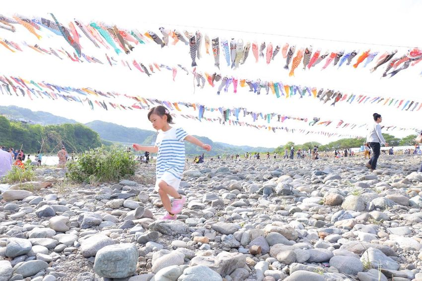こいのぼり 河原 Child