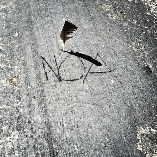Streetart Writing Writing On The Road Feathers Too Hot Canicule Asphalt Plume
