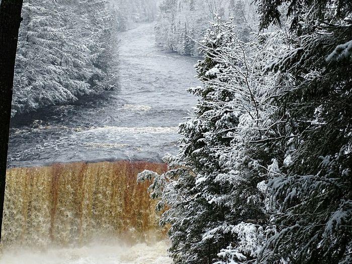 Showcase April Waterfall Upper Peninsula EyeEm Nature Lover Icy Waterfall Waterfall And Pine Trees Upper Taquamenon Falls