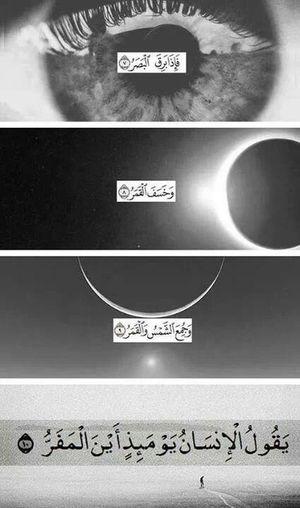 Quran Islam #Muslim #Alhamdulillah #Pray #Dua #Sujood #Proud2beamuslim #Blessed #Subhanallah #Beautiful #Muslimah Muslim Islamic