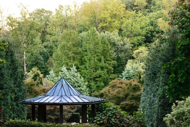 Architecture Gazebo Beauty In Nature Built Structure Day Garden Growth Nature No People Outdoors Park Pavilion Structure Tree