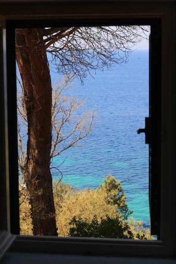 Beauty In Nature Day Indoors  Isola D'Elba  Nature No People Open The Window Portoferraio Sea Sky Tranquil Scene Tree Window