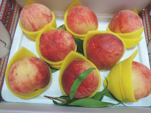 🍑 Juicy Fruits Peach Peaches Taiwan Taichung 梨山 水蜜桃