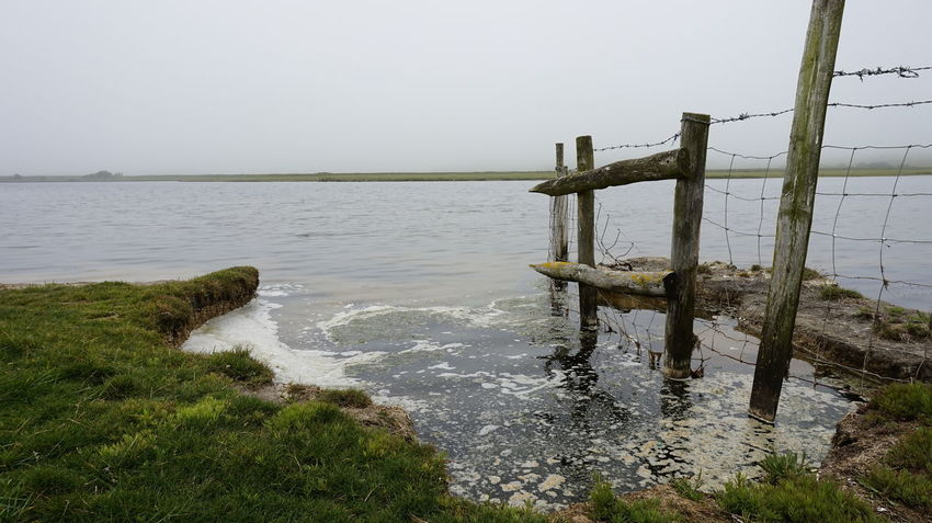 Beauty In Nature Calm Day Grass Growth Horizon Over Water Idyllic Jetty Nature No People Non Urban Scene Non-urban Scene Outdoors Plant Remote Rippled Scenics Sky Tranquil Scene Tranquility Water Wooden Post