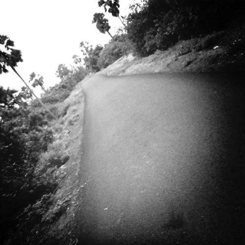 The Road Not taken......
