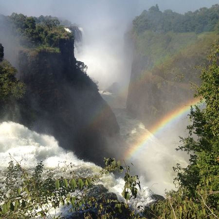 Victoriafalls Nature Tree Scenics Beauty In Nature Tranquility Tranquil Scene Non-urban Scene Fog Idyllic Day Mountain Outdoors Sky Landscape No People Water Double Rainbow Waterfall