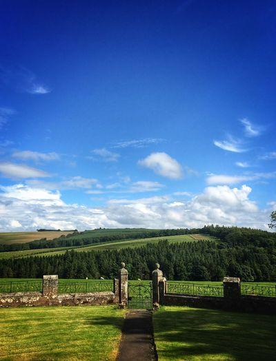 Green landscape against blue sky
