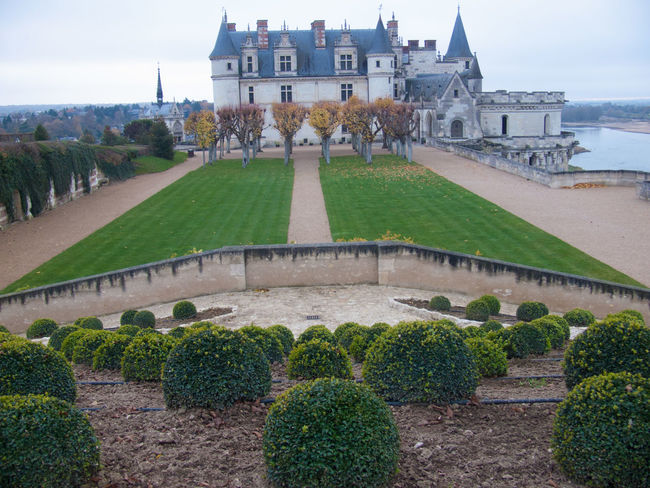 castle amboise,indre et loire,france Architecture Building Exterior Built Structure City Day Façade Flower Formal Garden Grass Green Color Growth Hedge Lawn Nature No People Outdoors Plant Sky Tourism Travel Destinations Tree