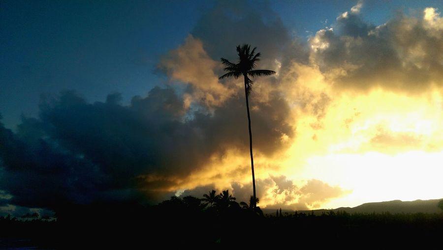Hawaii sunrise.