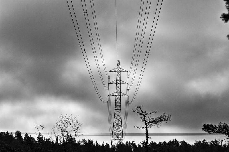 Low Angle View Of Electricity Pylon And Trees And Against Cloudy Sky