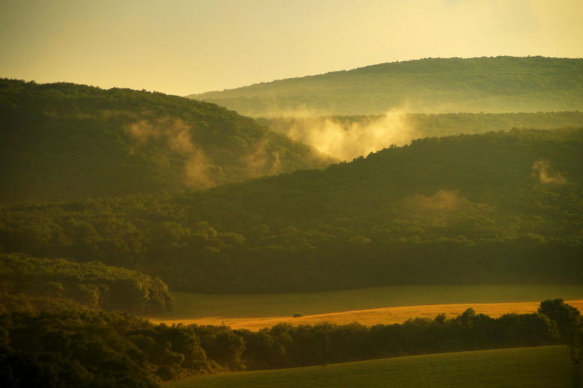 After rain in the sunset After The Rain Hills Agriculture Beauty In Nature Day Field Fog Forest Hazy  Idyllic Landscape Mountain Mountain Range Nature No People Outdoors Pilis Pilisszántó Rural Scene Scenics Sky Tranquil Scene Tranquility Tree Valley