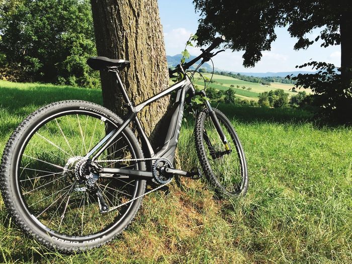 eMountainbike & Nature Emountainbike Nature Landscape Cube Mountainbike Nature Landscape Plant Bicycle Tree Land Vehicle Nature Transportation No People Green Color Grass Field Land Sunlight Growth Wheel Tree Trunk Outdoors Day