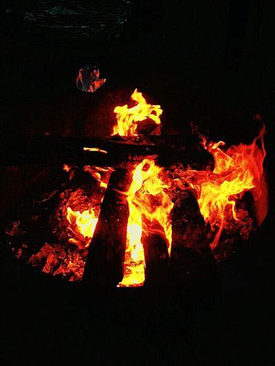 Camp Fire Warm Nightlife ☆