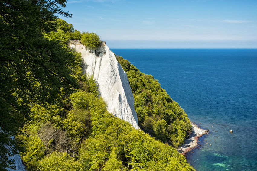 Baltic Sea coast on the island Ruegen, Germany. Baltic Sea Chalk Cliffs Coast Day Germany Holiday Landscape Nature Nature No People Outdoors Ruegen Scenics Shore Sky And Clouds Tourism Travel Trees Vacation Water White Cliffs