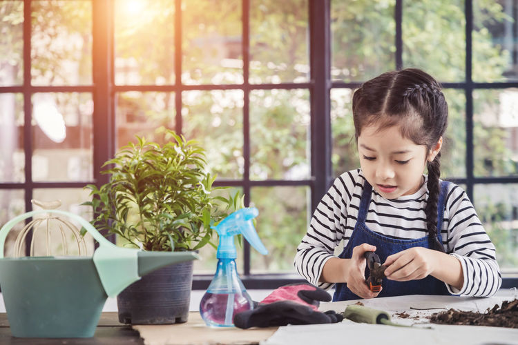 Boy looking through potted plants on table
