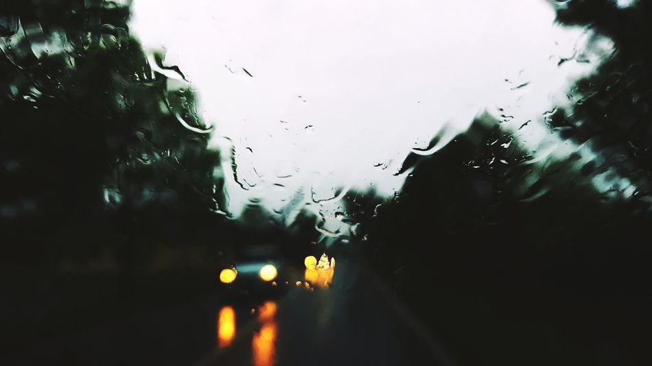 Raindrops Windshield Car Carview Driving Road Trees Green Carlights Artphotography No People Switzerland Wet RainyDays