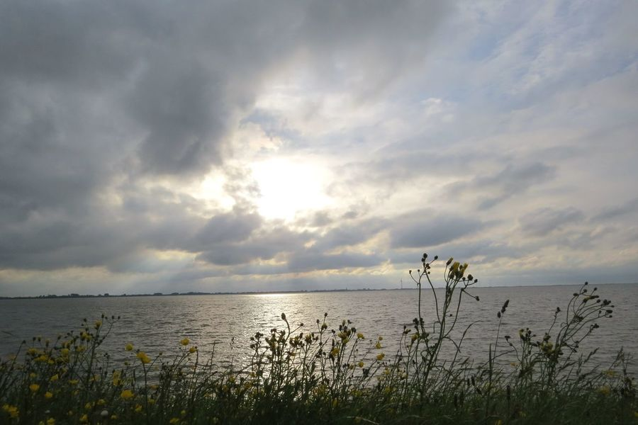 Water Sea Nature Horizon Over Water Cloud - Sky Grass Outdoors Landscape Tranquil Scene Scenics Tranquility Sky Beauty In Nature Sx50hs Ijsselmeer Thenetherlands Holland Cloudscape Sunset Horizon
